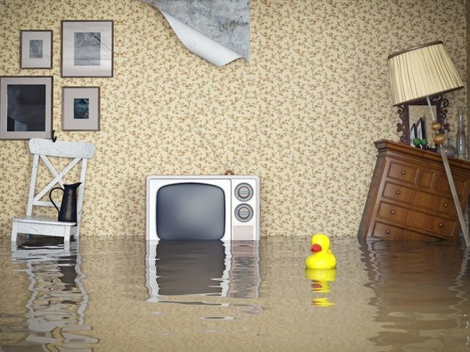 From cleanup to rebuild, let's take a look at some of the ways you can recover following a flood that damages your home.