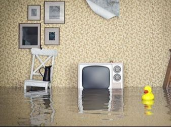 Let's take a look at some of the ways you can recover following a flood that damages your home.