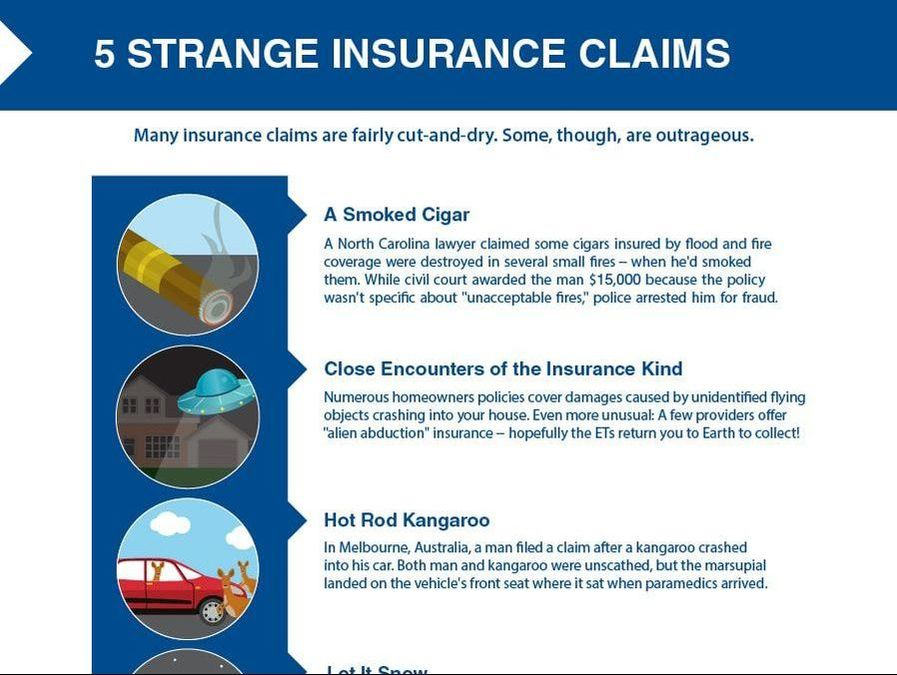 Here's a look at some strange insurance claims.