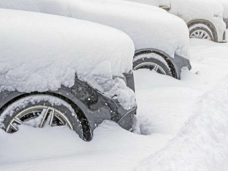 Learn how to adjust business plans in the event of a snow storm.