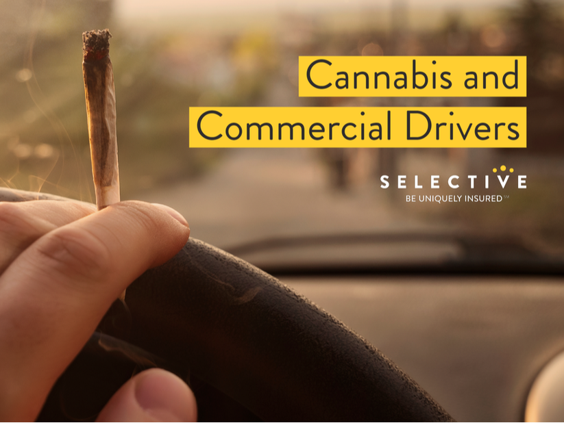 Cannabis Laws and Commercial Drivers