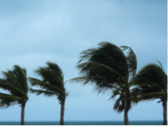 Proper preparation for a storm will help you, your family and your business weather the storm.