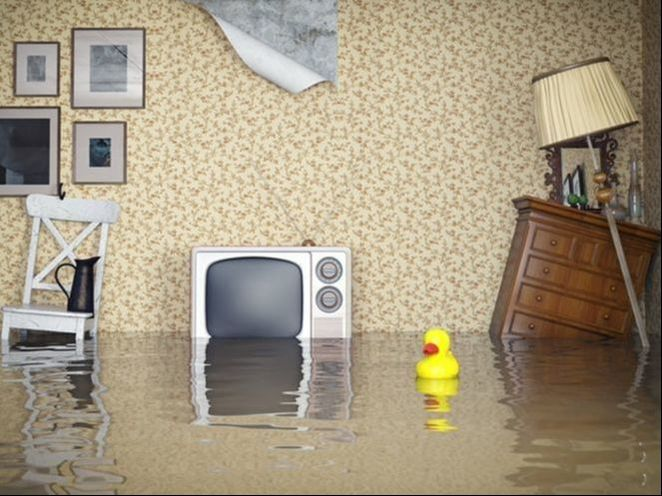 let's take a look at some of the ways you can recover following a flood that damages your home: