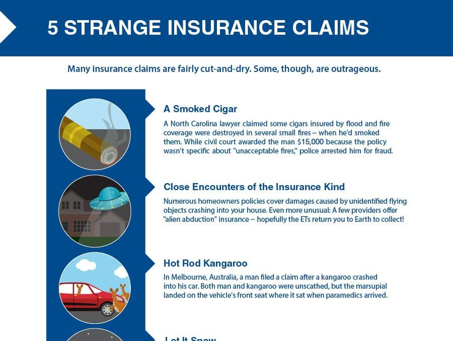Here is a look at some strange insurance claims.