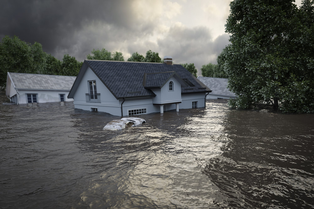 Find out more about floods from the National Flood Insurance Program.