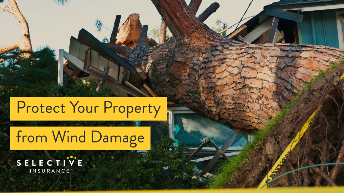 Protect your property against wind damage with these tips.